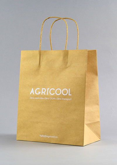 Fully automatic machine  bag for fruit